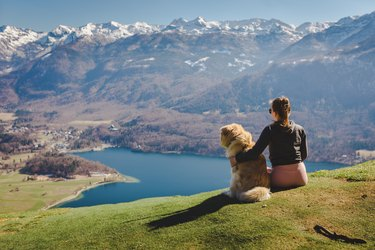 Woman and her dog admire the view