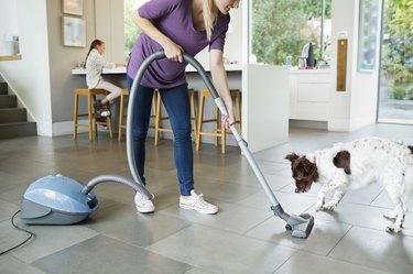 Woman vacuuming around sleeping dog