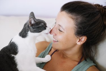 Cute cat licking her happy owner on the nose