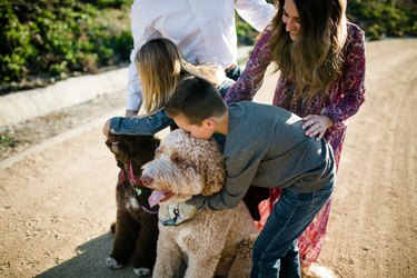 Kids Loving on Labradoodles While Mom Watches