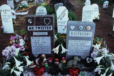 USA, California, San Francisco, gravestones in pet cemetery