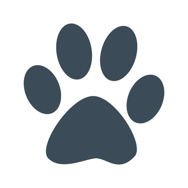Dog foot print icon isolated on white background