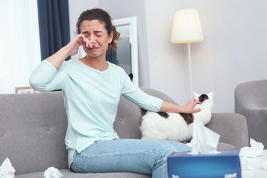 Young lady taking care of a cat developing a fur allergy