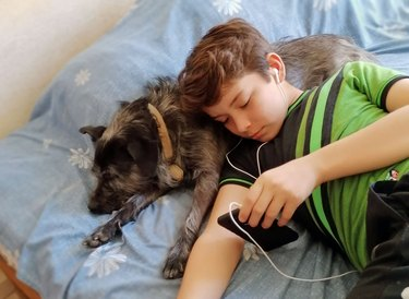 Creole dog and boy relaxing