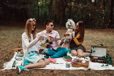 Group of teenagers with poodle having picnic