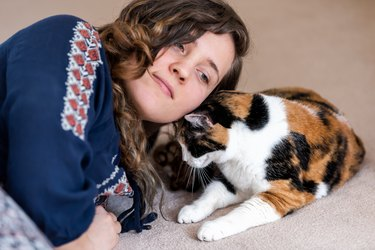 Young happy woman, owner, person bonding with calico cat bumping rubbing bunting heads, friends friendship companion pet affection face, cute adorable kitty