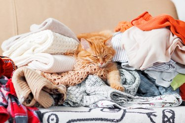 Cute ginger cat sleeps on a pile of knitted clothes.