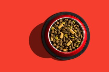 Directly Above Shot Of Dog Food In Bowl On Red Background