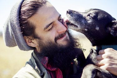 Close-up of dog licking mans face during sunny day