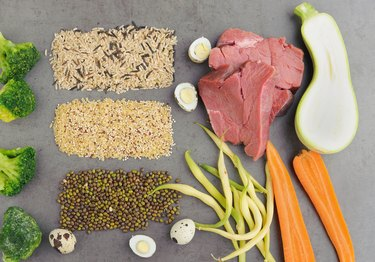 Natural raw ingredients for pet food on grey background.