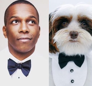 leslie odom jr and a dog in tuxes