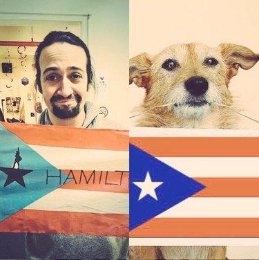 lin manuel miranda and dog holding puerto rican flags