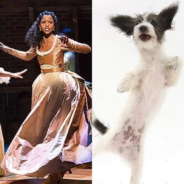 Renée Elise Goldsberry and dog dancing
