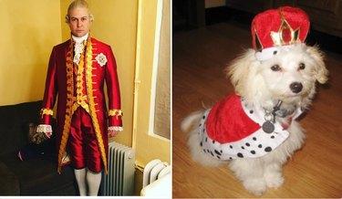 taran killam and a dog in king costumes