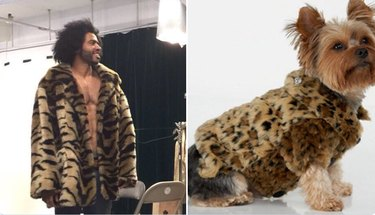 daveed diggs and dog in leopard print jackets