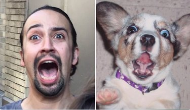 lin manuel-miranda and a dog looking excited