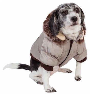 Pet Life Ski Parka Dog Coat
