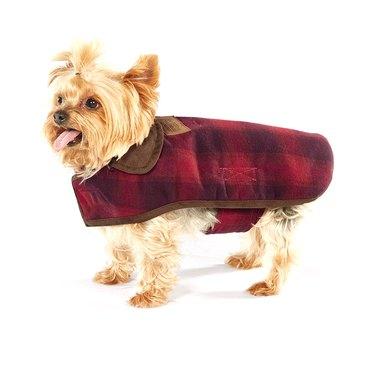 Pendleton Ombre Plaid Pet Jacket