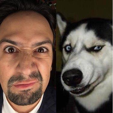 lin manuel-miranda and a dog sneering