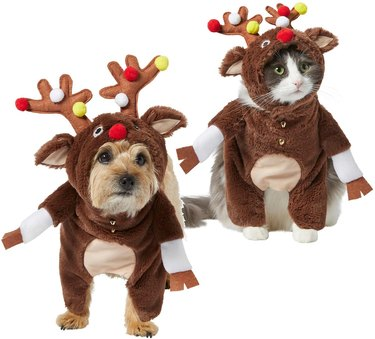Front Walking Reindeer Dog & Cat Costume