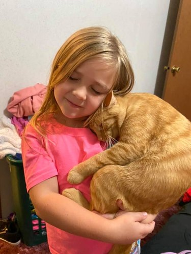 orange tabby cuddles with girl