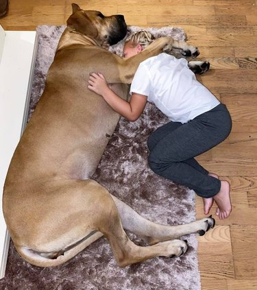 child and dog cuddle on ground