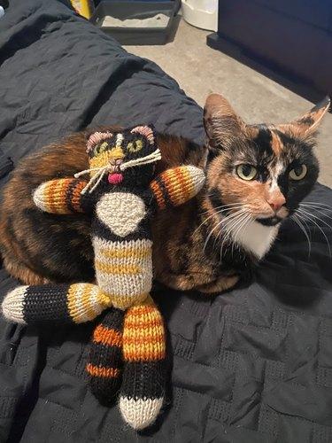 cat crades lookalike doll