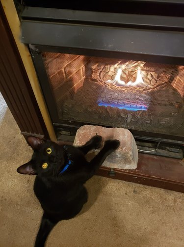 cat warms paws next to fireplace