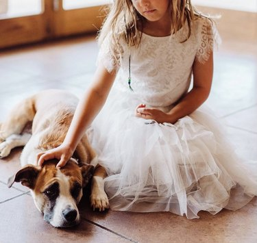 dog with flower girl