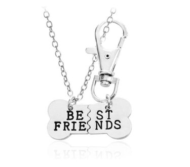 dog bone best friends silver necklace