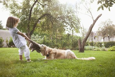 Girl (3-4) playing with dog on lawn