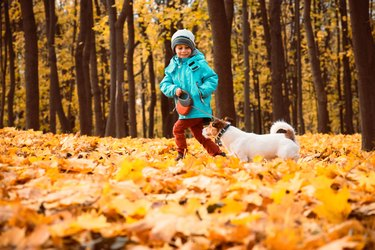 Kid boy walking and playing with dog on leash at outdoor autumn park