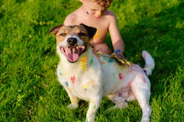 Kid painting with finger paint on happy domestic pet dog