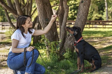 woman spend time with soy dog doberman outdoors