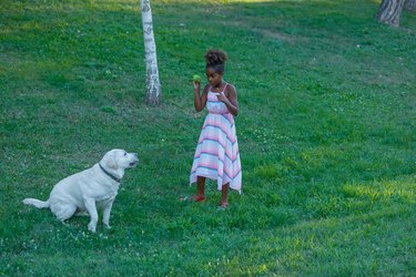 Little African Girl is Having a Lot of Fun With her Cute Dog.