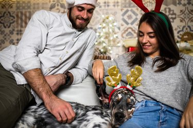 A couple enjoying Christmas with their dog
