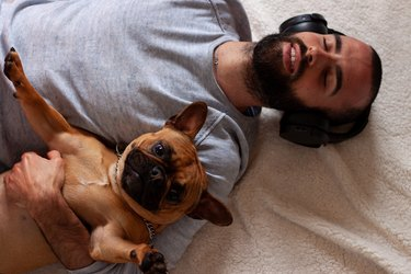 French Bulldog with young man with headphones smiling while lying on the floor