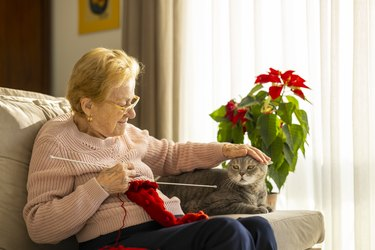 Senior woman knitting at home with cat next to her