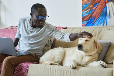 Black man reaching out hand to pet a white dog sitting next to him on a couch