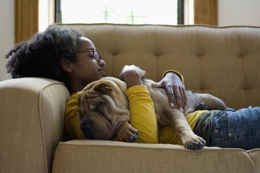 A young woman and a Shar-Pei napping on a couch