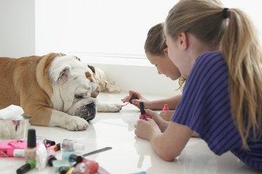 Caucasian girls painting nails of pet dog