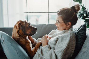 Woman cuddles, plays with her dog at home