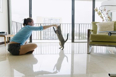 Woman sitting on floor playing with cat, side view