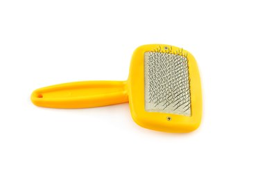 Dog grooming brush isolated on white background.