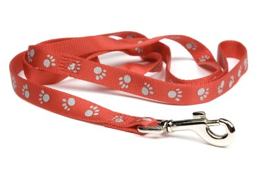 Red nylon dog lead or leash with paw print pattern.