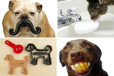 ...25 Stocking Stuffers That Are Purrfect For Your Pet