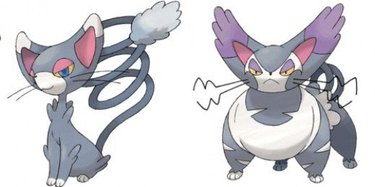 Glameow and Purugly Pokemon Cats