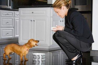 A professional woman feeding a small dachsund