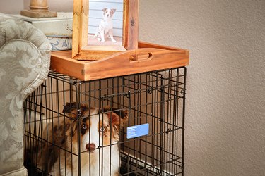 Your pup's crate doesn't have to be an eyesore when it doubles as a handy side table.
