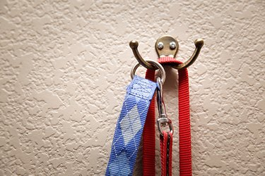 Hang your pup's leashes right by the door so that you're always ready to go at a moment's notice.